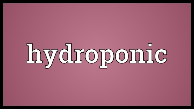 Hydroponic Meaning