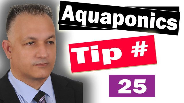 Aquaponics Definition – WHAT'S Aquaponics and SO HOW EXACTLY DOES It Work