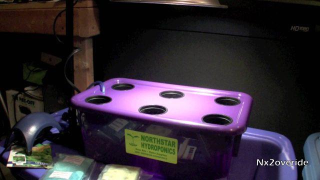 Northstar Hydroponics Grow Kit – A Beginner Getting Started