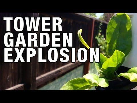 """Tower Garden Growth Explosion!"" by Epic Gardening"