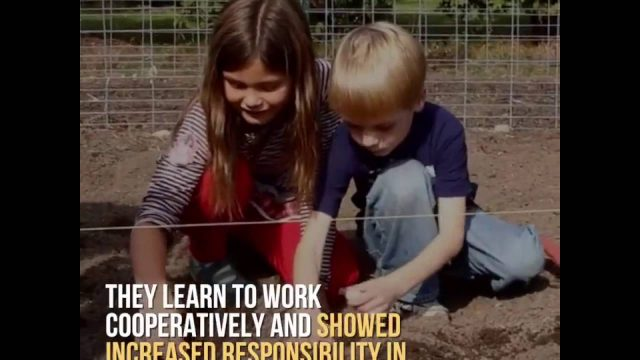 This is how children learns gardening