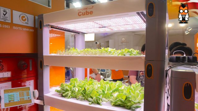 Opcom farm cube: hydroponic farming at home [English]