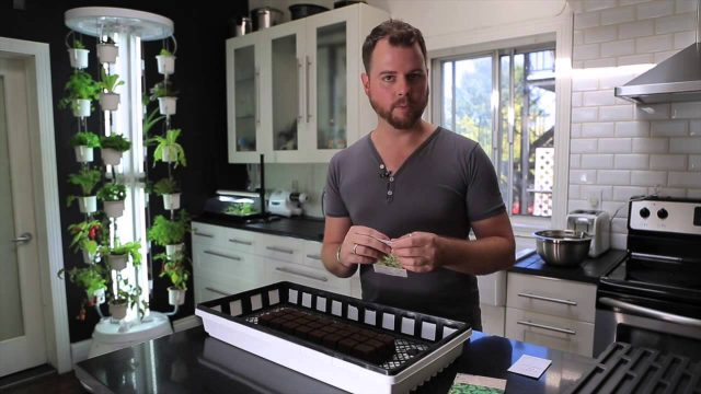 Seed Starting Tutorial for the NutriTower Indoor Gardening System