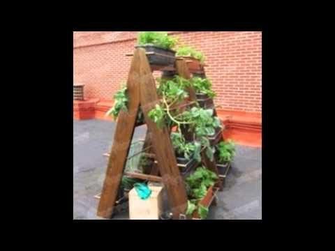 Algunas ideas para realizar huertos o jardines verticales