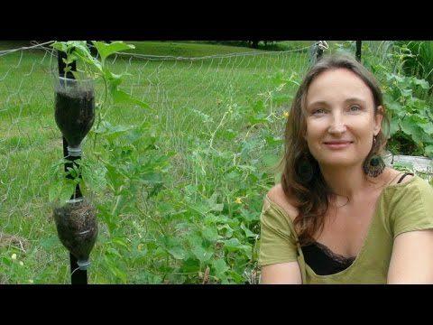 How to easily make a FREE vertical garden