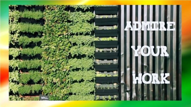 DIY Vertical Wall Garden   How To Build A Vertical Garden With Tips