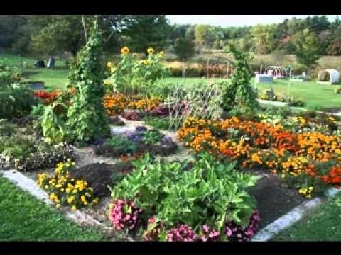 Planting An Herb Garden For Beginners Gardening Video Forum