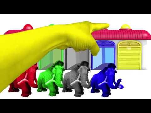 LEARN COLORS Finger Family w Mammoth Coulors – ! Color Video for kids! Garden Kids TV