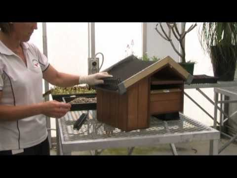 Create your own green roof letterbox