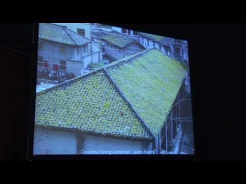 Learning About Green Roofs