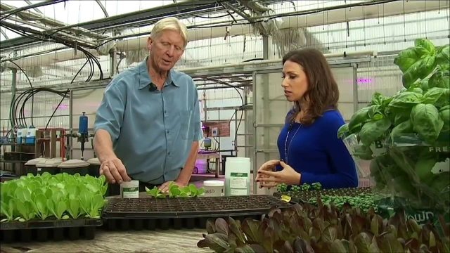 Hydroponic and Vertical Farming