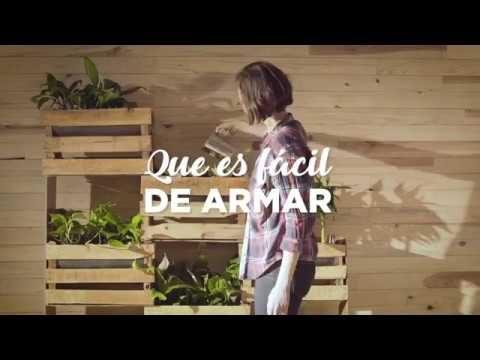 Jardines verticales: una opción para ayudar a purificar tu casa