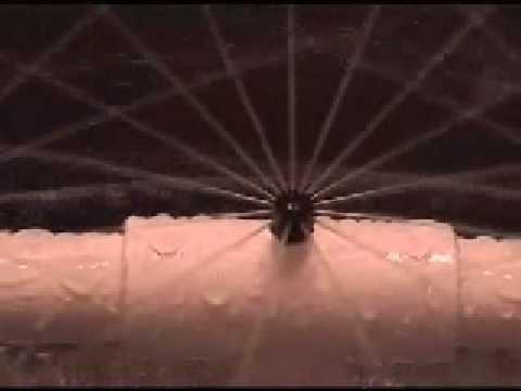 hydroponic aeroponic system working