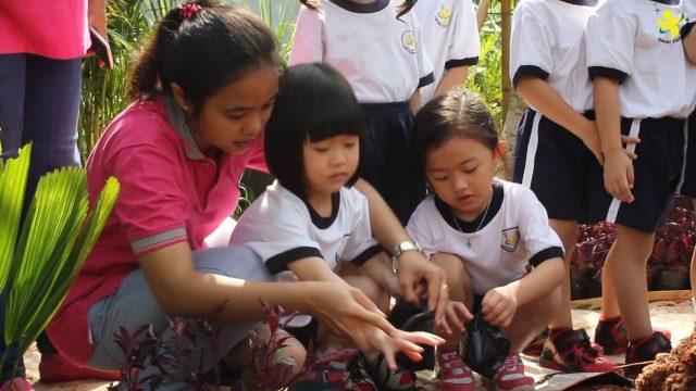 GARDENING TK AMORE PRIME SCHOOL