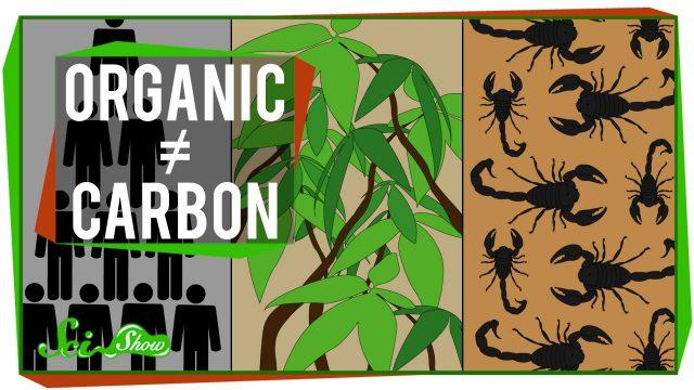 """IDTIMWYTIM: """"Organic"""""""