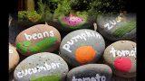 Wonderful Kids garden ideas
