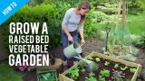 How to grow vegetables  in raised bed gardens
