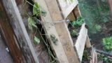 Pallet gardens number 4 and 5 in the greenhouse. One Sloped and one vertical