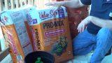 Container Gardening Soil Mix – Garden Tower
