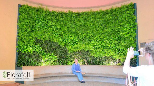 Florafelt Vertical Gardens Video Slideshow