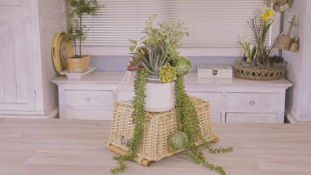 How to make a Hanging Succulent Christmas Arrangement