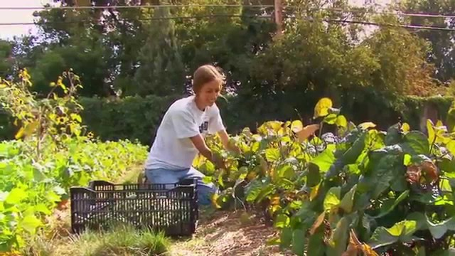 Urban Conversion: Urban Gardening, The White House and Monticello Teaser