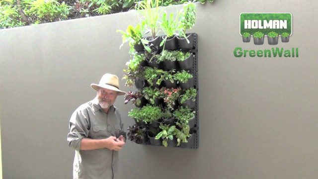 HOLMAN GreenWall – Creating a Vertical or Horizontal Display