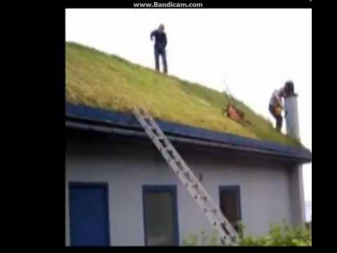 Mowing a grass roof