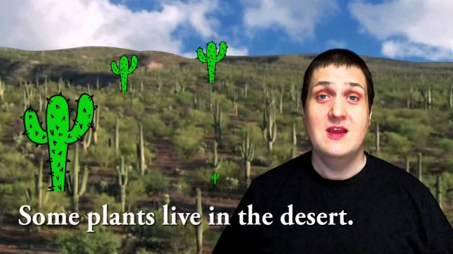 Plants Live in Many Places
