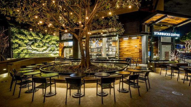 Starbucks Living Wall at Downtown Disney, Anaheim – Project of the Week 7/11/16