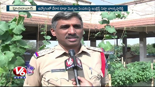 Bachupally Police Farming Vegetables | Roof Gardening | V6 News