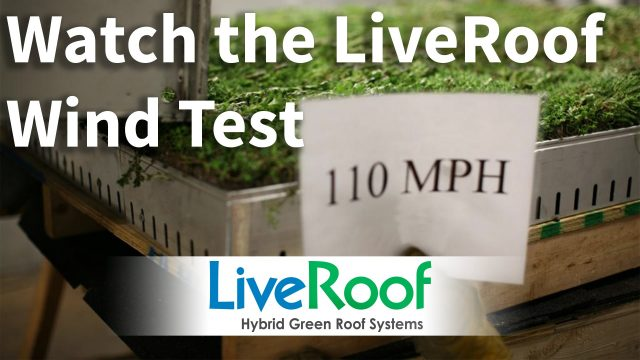 Green Roof Wind Test: LiveRoof