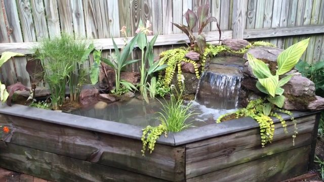 Tiny Backyard Pond | Water Gardens Maryland | Water Garden ideas for your MD backyard |