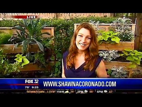 How To Grow a Living Wall Garden with Shawna Coronado
