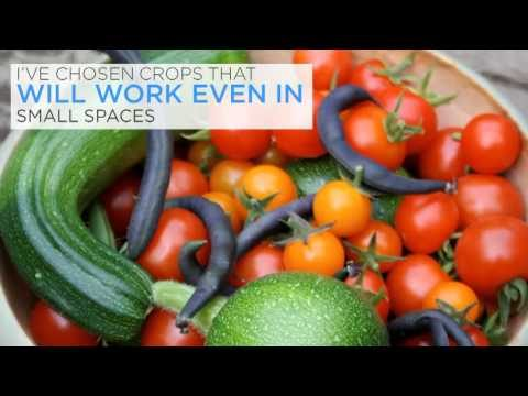 Vegetable Gardening Made Easy