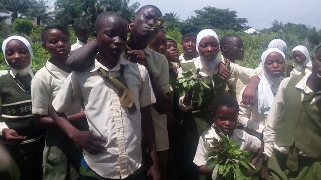 SALES: School Gardening Project (Agric Club), Nigeria.