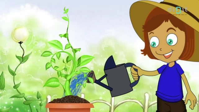 Let's Water The Plants Today | Animated Nursery Rhymes & Songs For  Kids